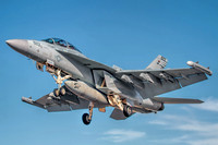 "EA-18G Growler VAQ-139  ""Cougars"""